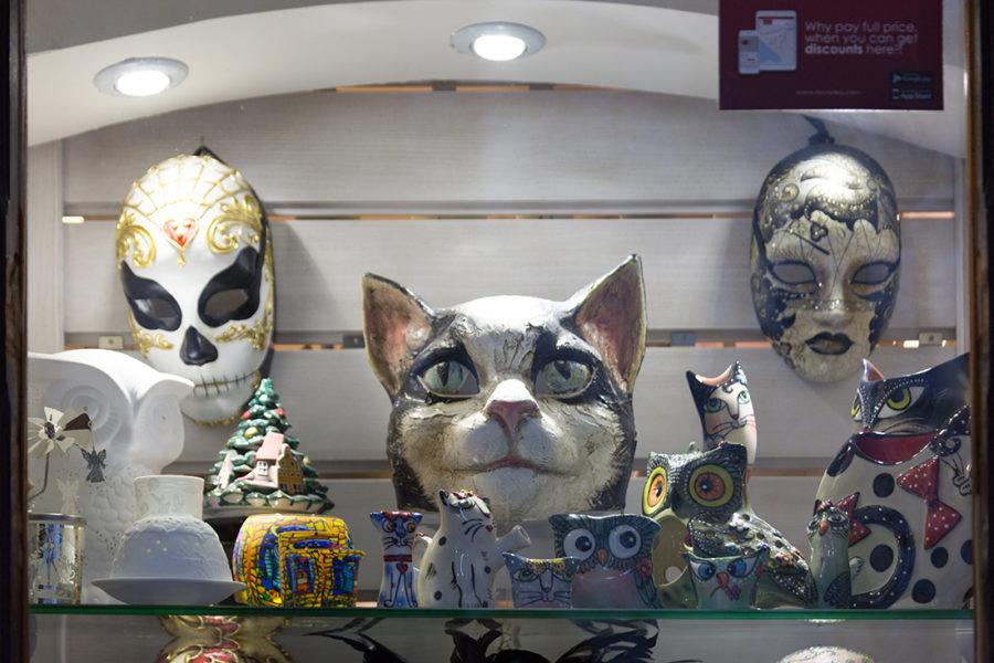 Кошки в Которе, путешествие по Черногории